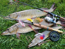 рыбалка с проживанием в загородном комплексе
